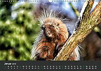 Tierwelten Extrem - Spektakuläre Tierfotos (Wandkalender 2019 DIN A3 quer) - Produktdetailbild 1