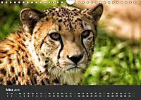 Tierwelten Extrem - Spektakuläre Tierfotos (Wandkalender 2019 DIN A4 quer) - Produktdetailbild 3