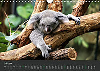 Tierwelten Extrem - Spektakuläre Tierfotos (Wandkalender 2019 DIN A4 quer) - Produktdetailbild 7