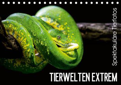 Tierwelten Extrem - Spektakuläre Tierfotos (Tischkalender 2019 DIN A5 quer), Christian Colista