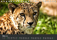 Tierwelten Extrem - Spektakuläre Tierfotos (Tischkalender 2019 DIN A5 quer) - Produktdetailbild 3