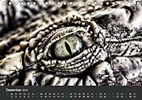 Tierwelten Extrem - Spektakuläre Tierfotos (Tischkalender 2019 DIN A5 quer) - Produktdetailbild 12