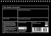Tiger. Gestreift, wild und schön (Tischkalender 2019 DIN A5 quer) - Produktdetailbild 13