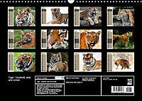 Tiger. Gestreift, wild und schön (Wandkalender 2019 DIN A3 quer) - Produktdetailbild 13