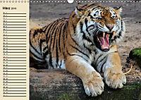 Tiger. Gestreift, wild und schön (Wandkalender 2019 DIN A3 quer) - Produktdetailbild 3