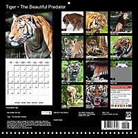 Tiger - The Beautiful Predator (Wall Calendar 2019 300 × 300 mm Square) - Produktdetailbild 13