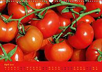 Tomatenkalender 2019 (Wandkalender 2019 DIN A3 quer) - Produktdetailbild 4