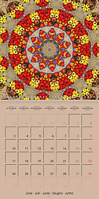 Tomato Kaleidoscope (Wall Calendar 2019 300 × 300 mm Square) - Produktdetailbild 6