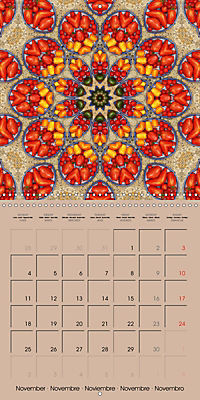 Tomato Kaleidoscope (Wall Calendar 2019 300 × 300 mm Square) - Produktdetailbild 11
