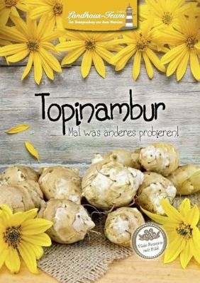 Topinambur - Mal was anderes probieren! - Angelika Willhöft pdf epub