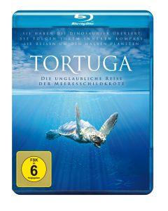 Tortuga - Die unglaubliche Reise der Meeresschildkröte, Melanie Finn