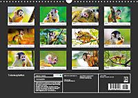 Totenkopfaffen (Wandkalender 2019 DIN A3 quer) - Produktdetailbild 13