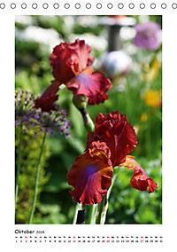 Traumhafte Iris (Tischkalender 2019 DIN A5 hoch) - Produktdetailbild 10
