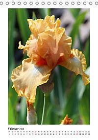 Traumhafte Iris (Tischkalender 2019 DIN A5 hoch) - Produktdetailbild 2