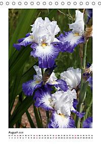 Traumhafte Iris (Tischkalender 2019 DIN A5 hoch) - Produktdetailbild 8