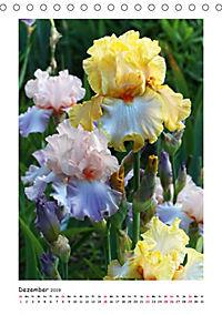 Traumhafte Iris (Tischkalender 2019 DIN A5 hoch) - Produktdetailbild 12