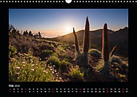 Traumhafte Sonne (Wandkalender 2019 DIN A3 quer) - Produktdetailbild 5