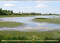 Traumhaftes Steinhuder Meer (Wandkalender 2019 DIN A2 quer) - Produktdetailbild 6