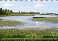 Traumhaftes Steinhuder Meer (Wandkalender 2019 DIN A3 quer) - Produktdetailbild 6