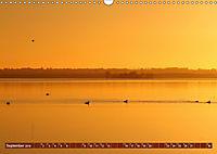 Traumhaftes Steinhuder Meer (Wandkalender 2019 DIN A3 quer) - Produktdetailbild 9