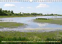 Traumhaftes Steinhuder Meer (Wandkalender 2019 DIN A4 quer) - Produktdetailbild 6
