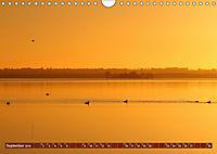 Traumhaftes Steinhuder Meer (Wandkalender 2019 DIN A4 quer) - Produktdetailbild 9