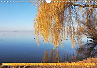 Traumhaftes Steinhuder Meer (Wandkalender 2019 DIN A4 quer) - Produktdetailbild 10