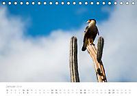 Trauminsel Curaçao (Tischkalender 2019 DIN A5 quer) - Produktdetailbild 1