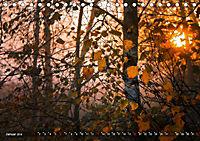 Traumland Teufelsmoor (Tischkalender 2019 DIN A5 quer) - Produktdetailbild 1