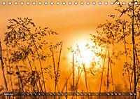 Traumland Teufelsmoor (Tischkalender 2019 DIN A5 quer) - Produktdetailbild 4