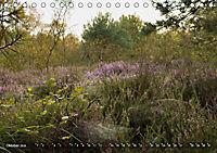 Traumland Teufelsmoor (Tischkalender 2019 DIN A5 quer) - Produktdetailbild 10