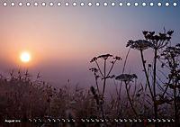 Traumland Teufelsmoor (Tischkalender 2019 DIN A5 quer) - Produktdetailbild 8