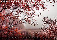 Traumland Teufelsmoor (Tischkalender 2019 DIN A5 quer) - Produktdetailbild 9