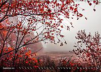 Traumland Teufelsmoor (Wandkalender 2019 DIN A2 quer) - Produktdetailbild 9