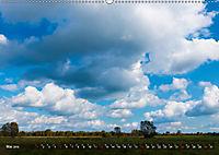 Traumland Teufelsmoor (Wandkalender 2019 DIN A2 quer) - Produktdetailbild 5