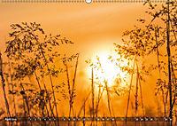 Traumland Teufelsmoor (Wandkalender 2019 DIN A2 quer) - Produktdetailbild 4