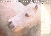 Traumpferde. Lichtvolle Märchenbilder (Tischkalender 2019 DIN A5 quer) - Produktdetailbild 4