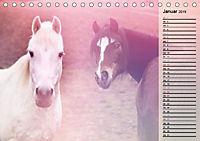 Traumpferde. Lichtvolle Märchenbilder (Tischkalender 2019 DIN A5 quer) - Produktdetailbild 1