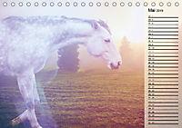Traumpferde. Lichtvolle Märchenbilder (Tischkalender 2019 DIN A5 quer) - Produktdetailbild 5