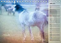 Traumpferde. Lichtvolle Märchenbilder (Tischkalender 2019 DIN A5 quer) - Produktdetailbild 6