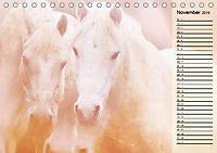 Traumpferde. Lichtvolle Märchenbilder (Tischkalender 2019 DIN A5 quer) - Produktdetailbild 11