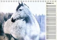 Traumpferde. Lichtvolle Märchenbilder (Tischkalender 2019 DIN A5 quer) - Produktdetailbild 10