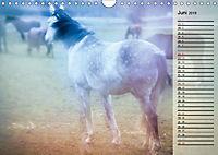 Traumpferde. Lichtvolle Märchenbilder (Wandkalender 2019 DIN A4 quer) - Produktdetailbild 6