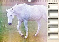Traumpferde. Lichtvolle Märchenbilder (Wandkalender 2019 DIN A4 quer) - Produktdetailbild 9