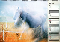 Traumpferde. Lichtvolle Märchenbilder (Wandkalender 2019 DIN A2 quer) - Produktdetailbild 7