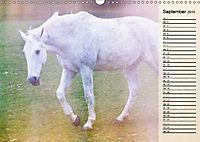 Traumpferde. Lichtvolle Märchenbilder (Wandkalender 2019 DIN A3 quer) - Produktdetailbild 9