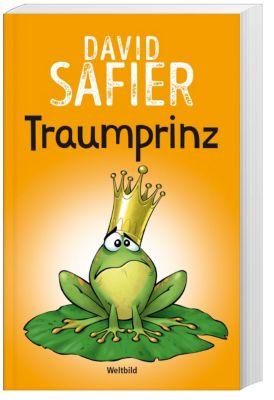 Traumprinz, David Safier