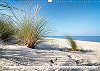 Traumstrände an Deutschlands Küsten (Wandkalender 2019 DIN A3 quer) - Produktdetailbild 6