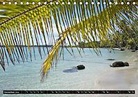 Traumziele weltweit - Bocas del Toro (Tischkalender 2019 DIN A5 quer) - Produktdetailbild 12