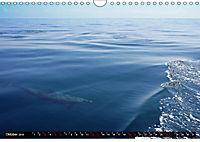 Traumziele weltweit - Bocas del Toro (Wandkalender 2019 DIN A4 quer) - Produktdetailbild 10